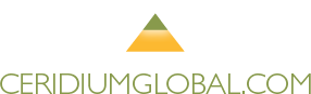 McDowell Mountain Ranch logo